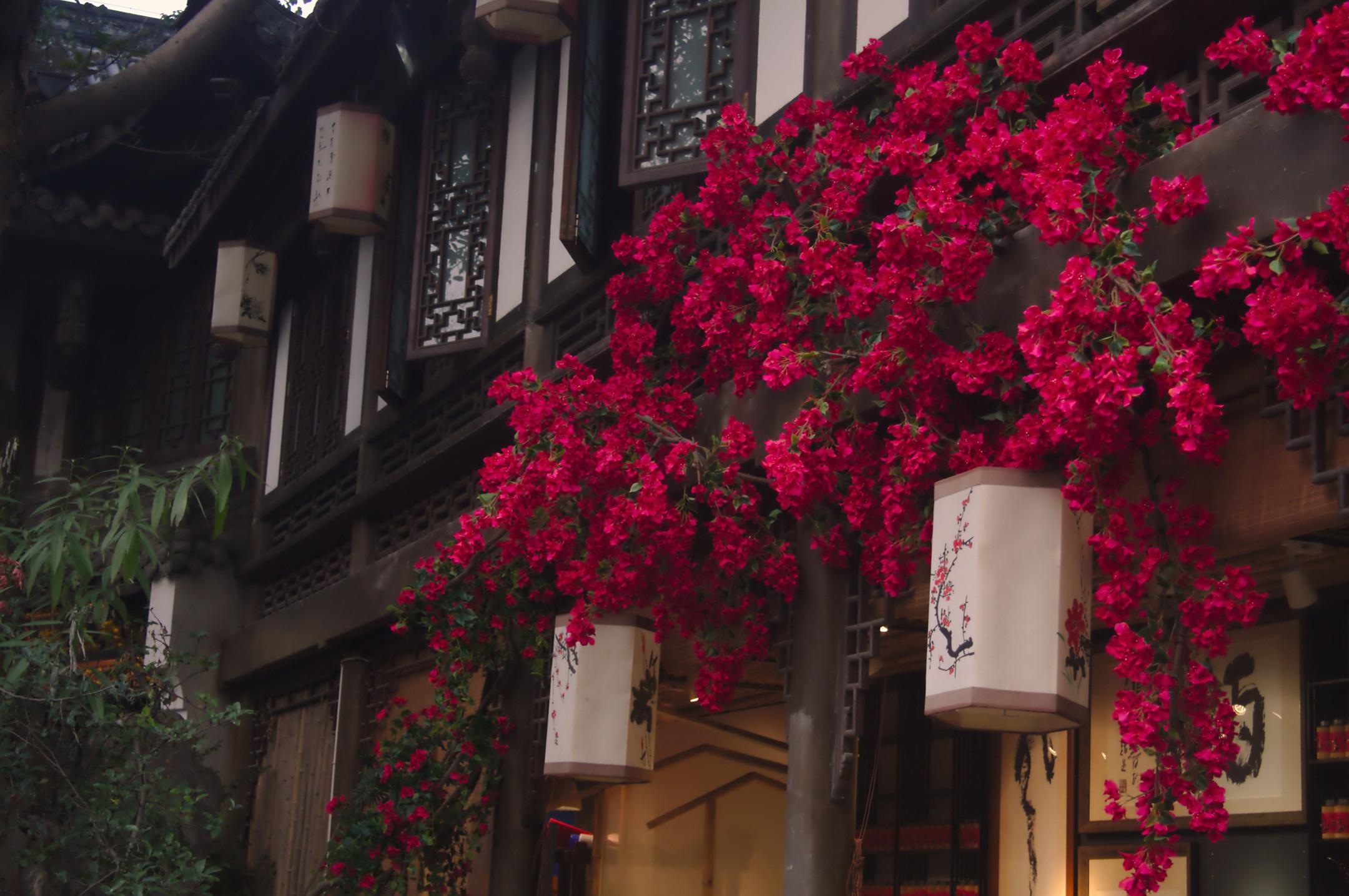 Vibrant Jinli Street